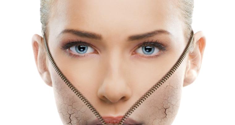 15 interessante FAKTA om huden
