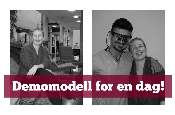 Demomodell for en dag!