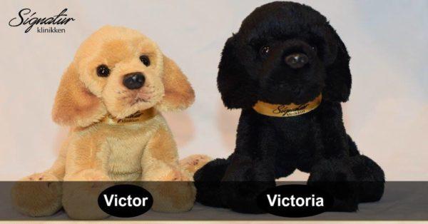 Signaturklinikken Victor & Victoria - Offisielle maskoter
